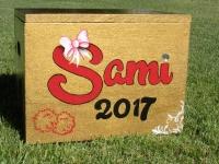 Sami 2017