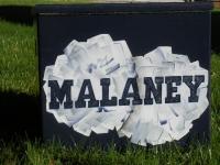 Malaney pom poms