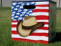American Flag with Cowboy hat