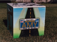 Amy Licence plate
