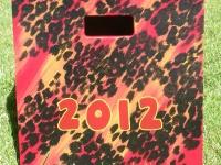 2012 leopard