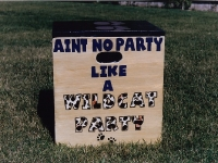 Aint no party