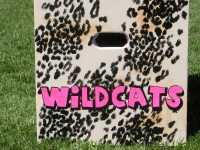 Cheetah Wildcats