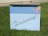 Delany Ice skate